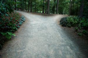 path-choice
