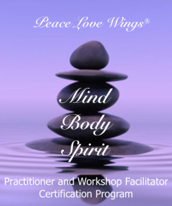 Peace Love Wings - Mind Body Spirit Program